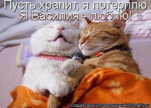 А я Васю люблю!