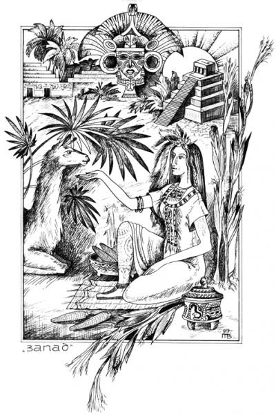 Женщина ЗАПАДА